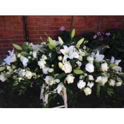 Sympathy 24 - Prices start from £60.00
